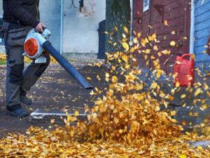 Leaf Blower, Fall Maintenance