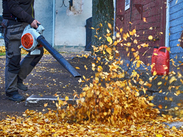 Leaf Blower, Fall Maintenance
